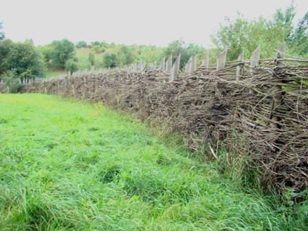 Fot.02 Olsztynek ogrodzenie